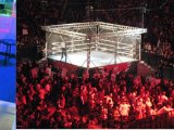 Shane Co., Genesis Diamonds to Settle Matters in Cage Match
