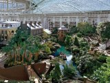 Tourist Begins Fifth Consecutive Day Hopelessly Lost In Opryland Hotel Atriums